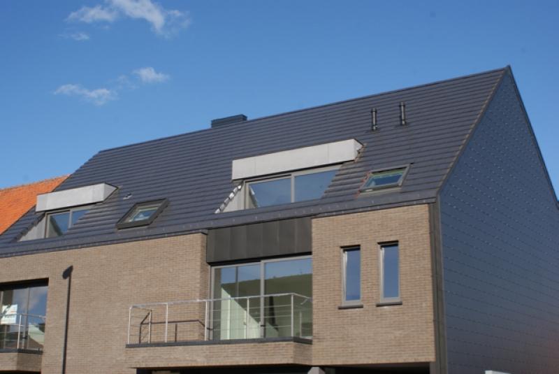 dakwerken+gevelbekleding